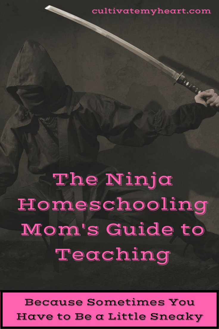 Believe it or not, kids don't always want to do schoolwork. Homeschooling moms sometimes need to be a little sneaky to make sure kids are learning. With these tips, your students will never know what hit them.